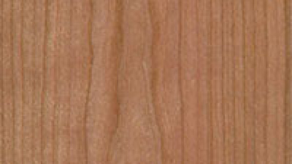 Cherry Commercial Wood Doors
