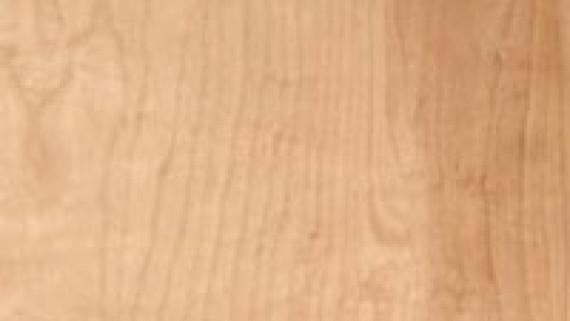 Natural Birch Commercial Wood Doors